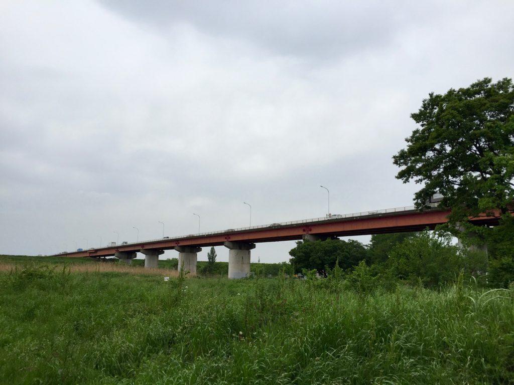さくら草公園から秋ヶ瀬橋を望む