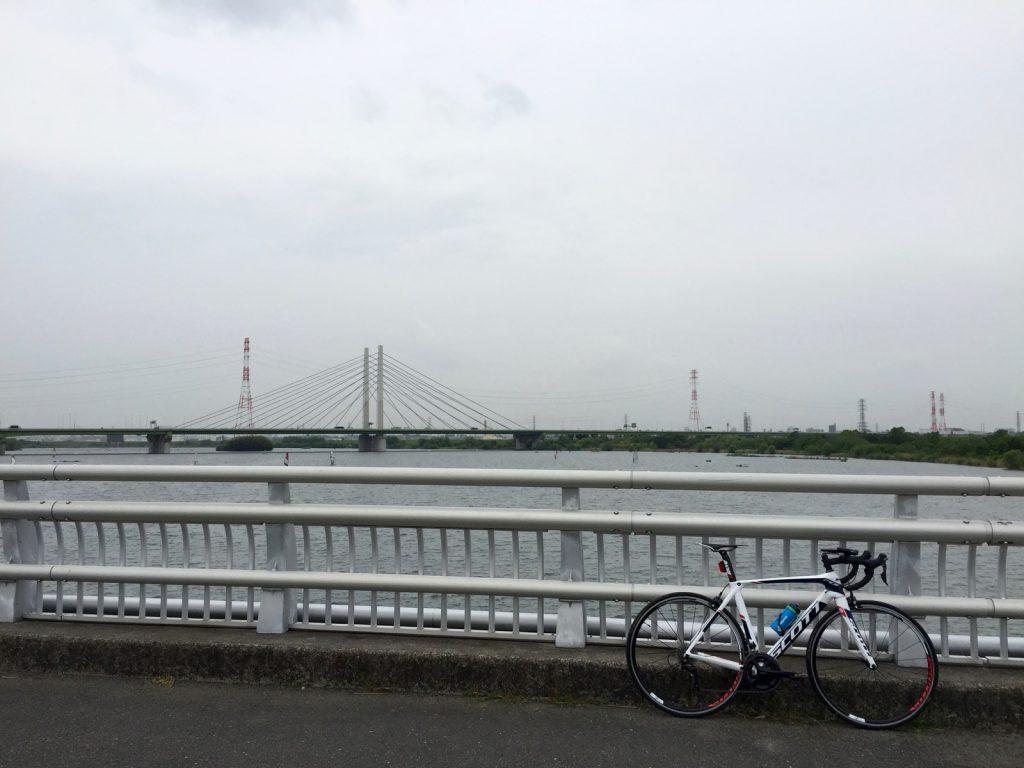 彩湖と幸魂大橋